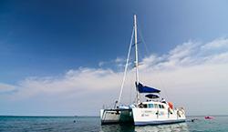 ทัวร์เกาะไม้ท่อนด้วยเรือใบ  (Sailing Catamaran)